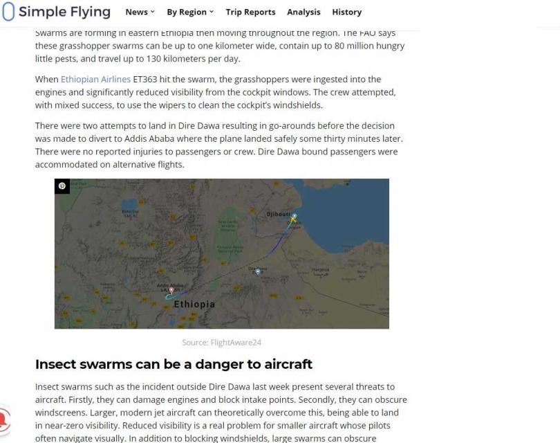 班機從吉布地飛往衣索比亞城市,偏離航線原因就是遇到蝗蟲大軍。(圖/翻攝自Simple Flying)