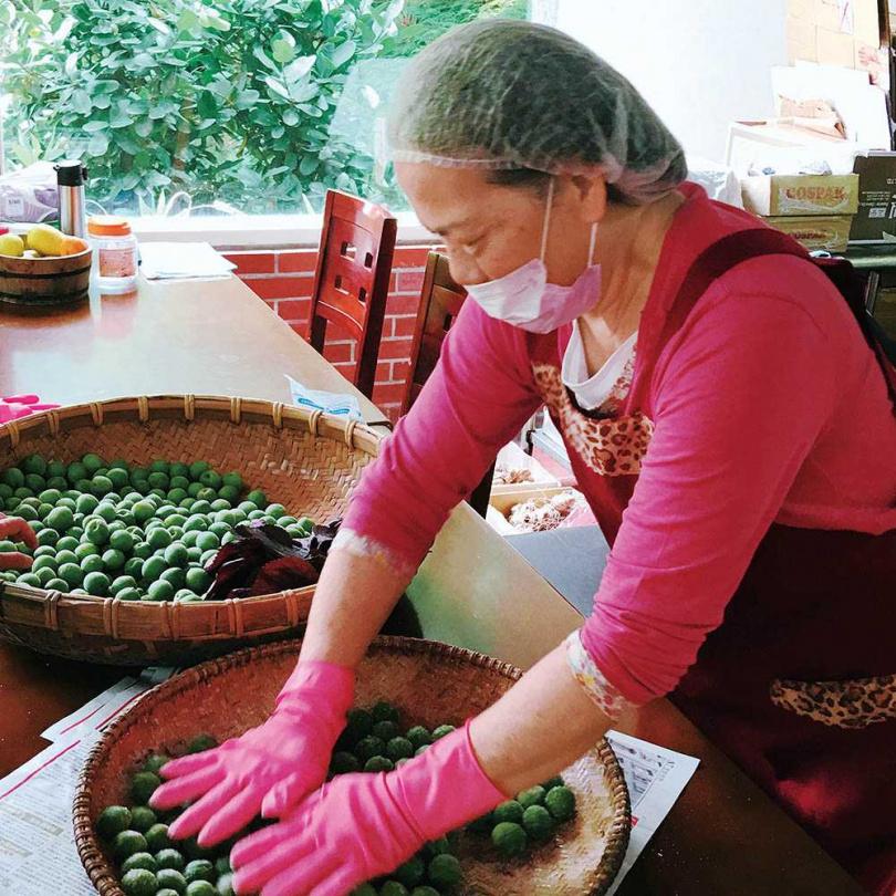 康阿金醃梅時需經過手工選梅、拍破等步驟。(圖/品牌提供)