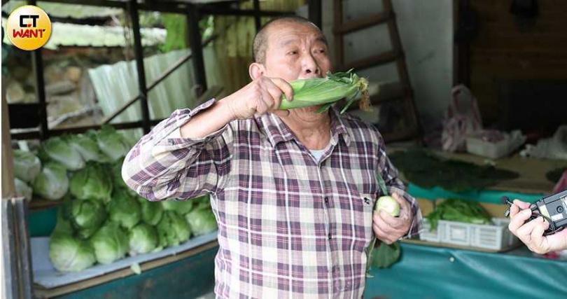 在竹子湖賣蔬果的李阿伯模仿猴子一手吃玉米,另一手腋下還挾著一根的模樣,連他自己都覺得又好氣又好笑。(圖/張文玠攝)