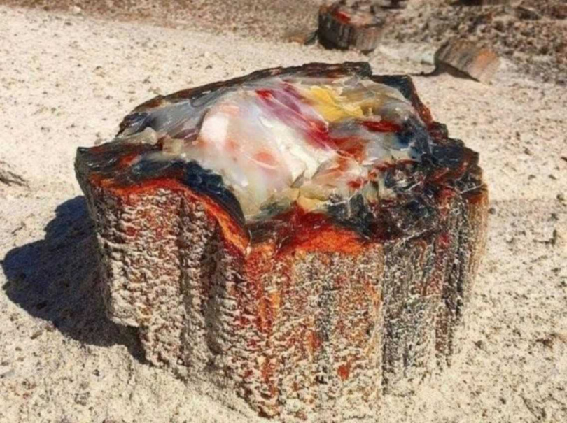像蛋白石一般豐富的色澤變化,讓人目不睱給。(圖/翻攝自reddit)