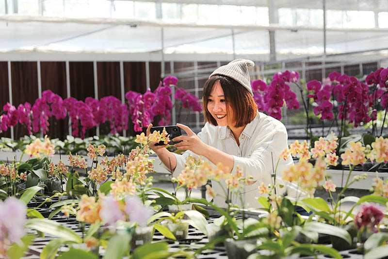 「金車礁溪蘭花園」有各式品種的蘭花,遊人怎麼拍都不膩。(圖/于魯光攝)