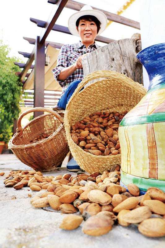 大部分的杏仁都是和美國加州的農地契作,林銀杏還親自去當地視察。(圖/林銀杏提供)