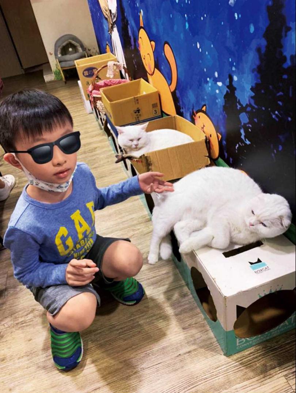 婚前郭昱晴就積極為流浪動物發聲,也教育兒子Lingo要友善對待動物。(圖/郭昱晴提供)