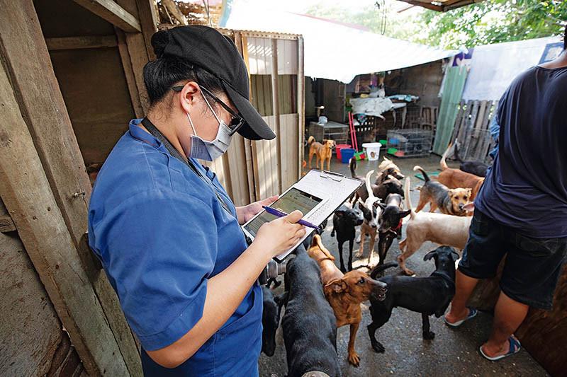 即使徐女惡行不斷,台南市動保處仍持續讓她領養犬隻,還提供補助。(圖/讀者提供)