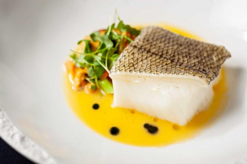 小鱗犬牙南極魚。(圖/台北國賓大飯店提供)