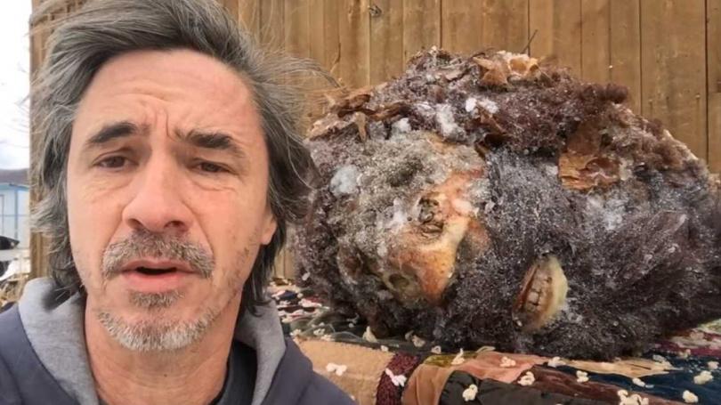 70公分頭顱冰封半世紀竟有雙食道。(圖/Peter Caine Dog Training Youtube)