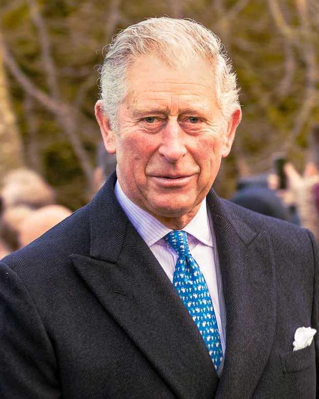 查爾斯王子威脅切斷對哈利夫妻的金錢資助。(圖/翻攝自維基百科)
