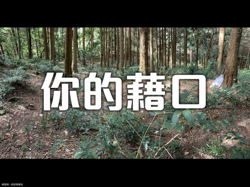 (圖/林務局-森活情報站臉書)