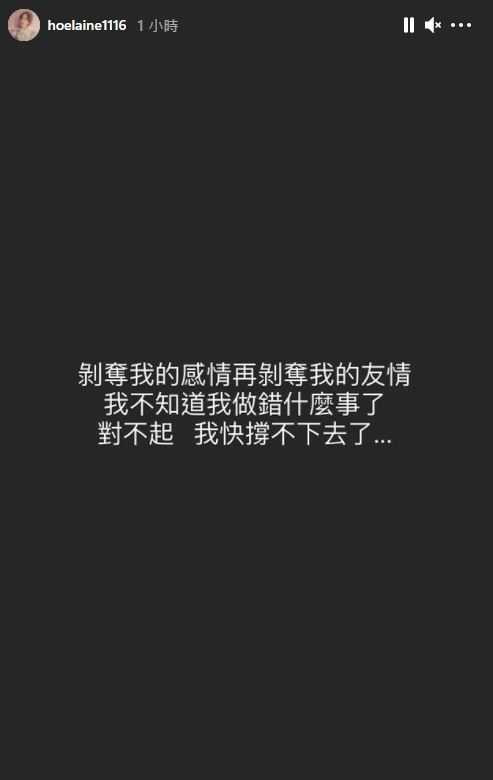 (圖/翻攝自荳荳、何孟遠IG)