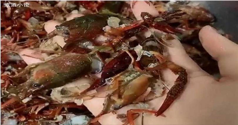 中國大陸一名女子將小龍蝦放進洗衣機清洗,沒想到小龍蝦最後都碎成渣。(圖/翻攝自網易新聞)