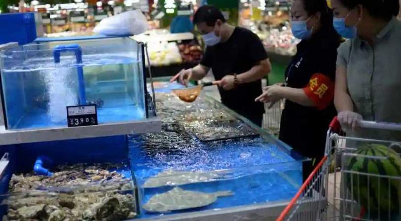 大陸是全球最大的鮭魚進口國之一,疫情爆發之前每年進口量為4萬至10萬公噸。(圖/Reuters)