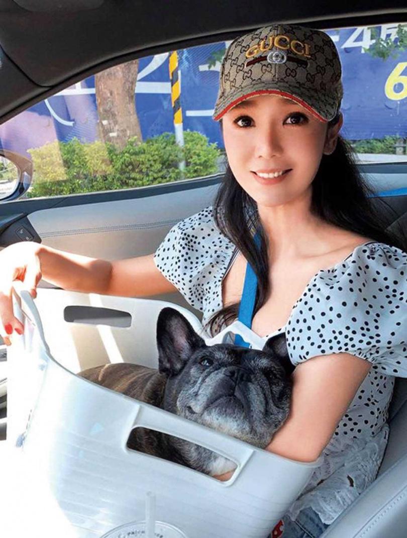 海倫清桃常開車帶琪琪兜風,還搞笑地把琪琪裝在收納盒中,模樣十分可愛。(圖/海倫清桃提供)