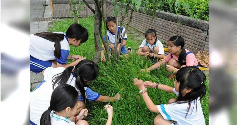 花藝教學於校園裡採集花藝素材。