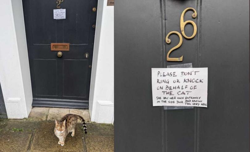 貓咪飼主無奈在門上貼紙條說明真相。(圖/翻攝自Charlietrypsin Twitter)