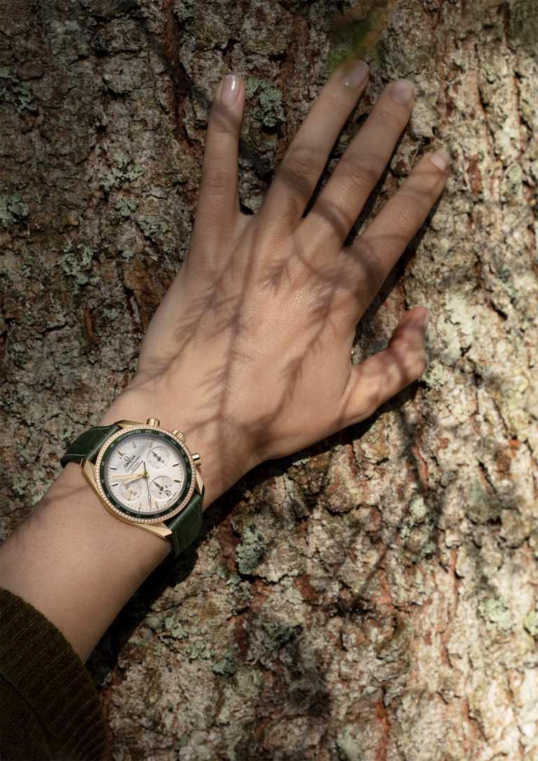 OMEGA「Speedmaster超霸系列」同軸擒縱計時腕錶,18K黃金錶殼,38mm╱616,500元。(圖╱OMEGA提供)