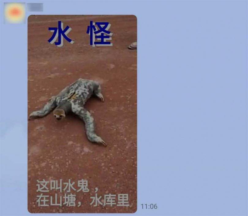 社群平台和通訊軟體瘋傳一段「水鬼」影片。(圖/翻攝自台灣事實查核中心網頁)