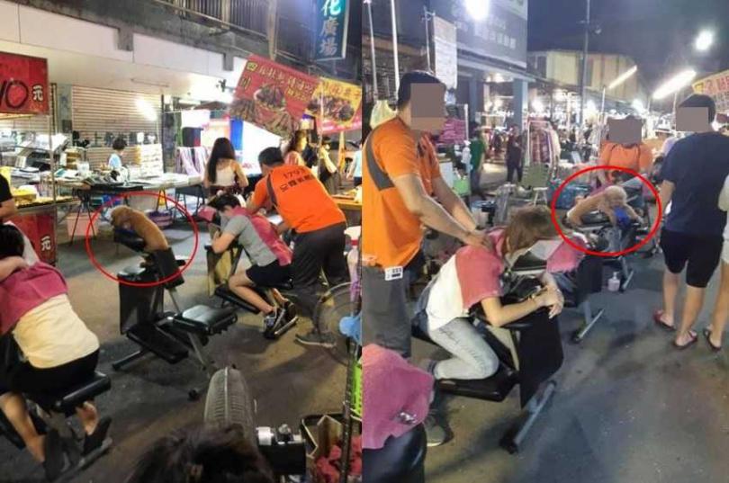 一隻貴賓狗趴在椅子上似乎在等按摩。(圖/翻攝自「路上觀察學院」臉書)