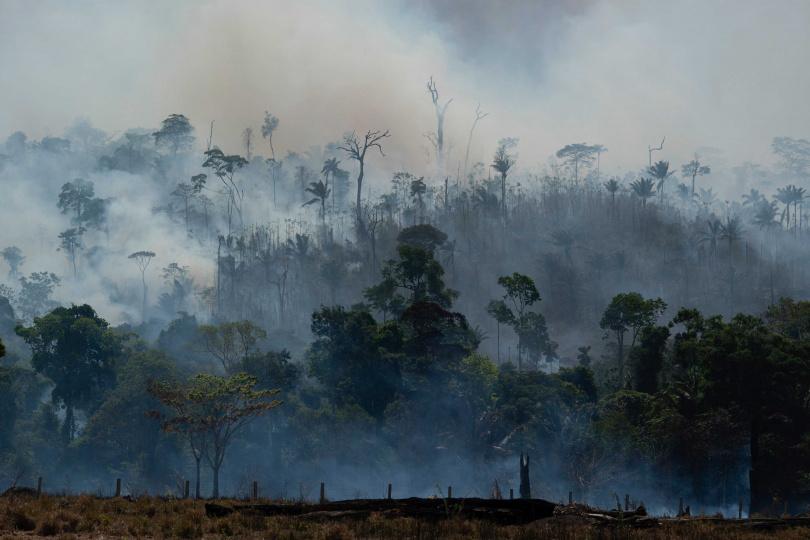 波索納洛計劃開發亞馬遜森林,認為這種做法可以降低貧窮。(圖/達志/美聯社)