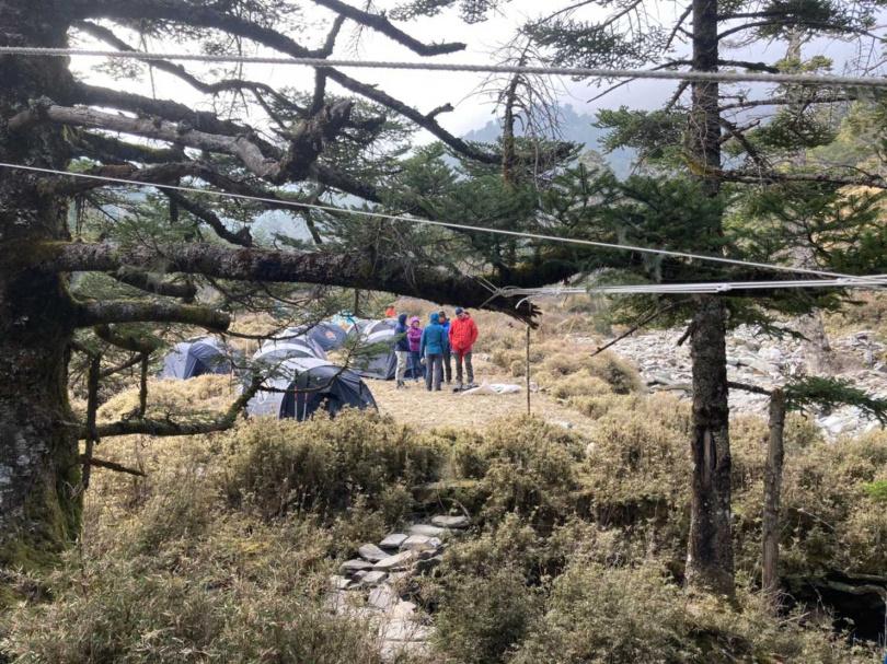 近幾年從戒茂斯登山口前往嘉明湖的山友漸增,沿線營地可見帳篷紮營。(圖/李蕙璇攝)