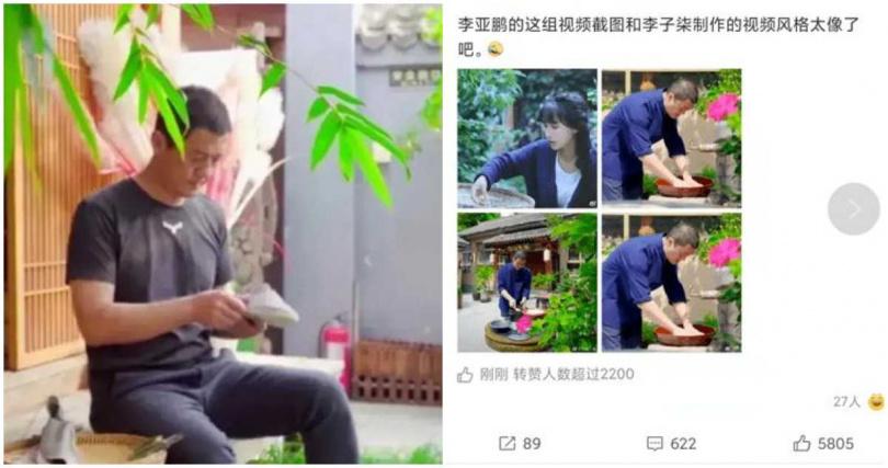 李亞鵬近期拍的影片,被網友稱和李子柒的影片超極像。(合成圖/百度)