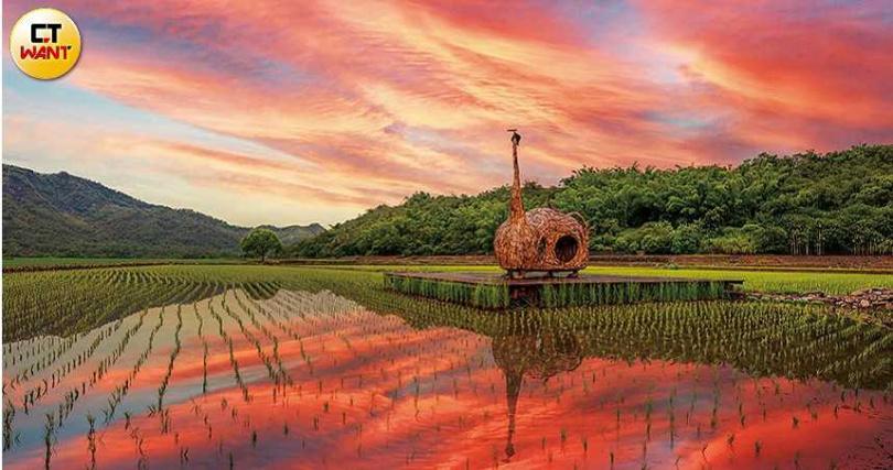 藝術家伊祐噶照的《貓咪種子》矗立在鹿野后湖部落的田野,特別療癒。(圖/焦正德攝)