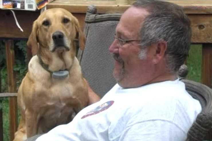 11歲的拉不拉多犬和主人有著深厚情感,先後相差1.5小時過世。(圖/Heather Nicoletti FB)
