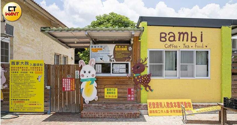 兔子餐廳擁有500坪的大空間,在內的兔子可以隨意自由奔跑。(圖/宋岱融攝)