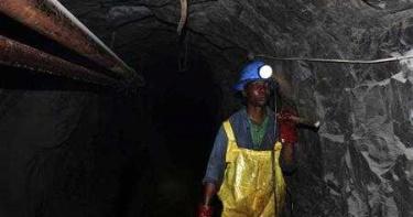 詭異巧合!雲南礦工清理蝙蝠糞2周染病亡 美專家挖出8年前鐵證