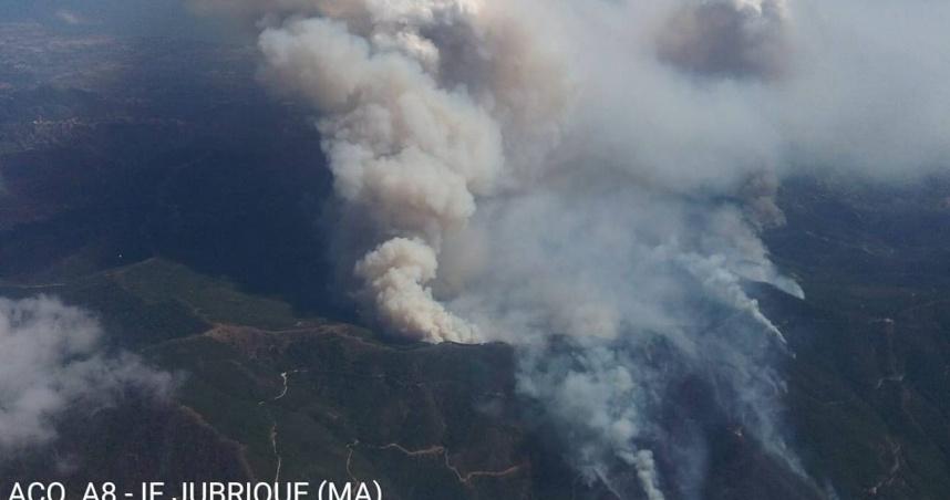 西班牙野火焚燒7400公頃 超過2000人被迫撤離家園