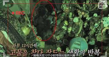 韓國獨居老婦缺乏安全感 2年家中囤積30公噸雜物
