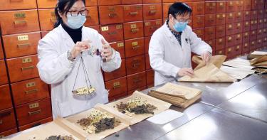 鉛中毒引爆中藥檢驗人潮 5大重金屬檢驗最熱門