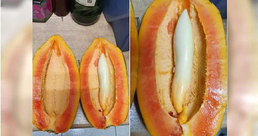 木瓜長出「白色條狀物」 專家解惑:異變形成的「胎木瓜」