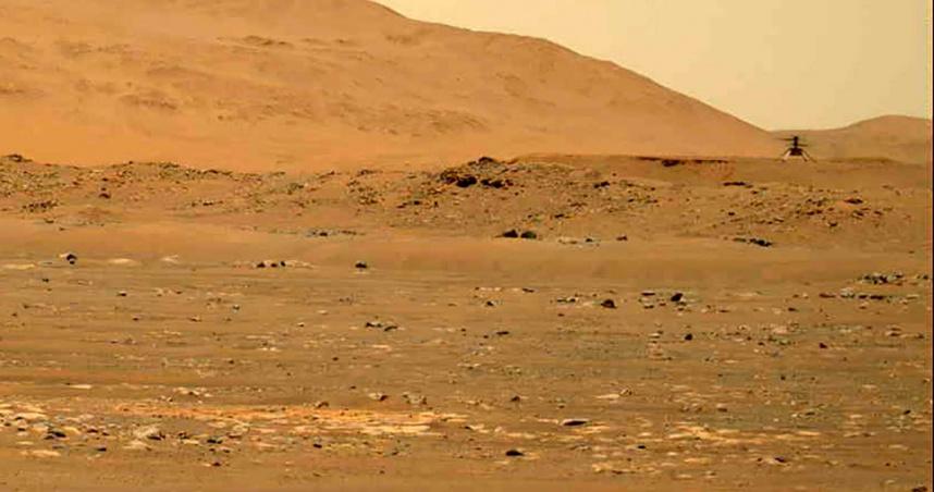 火星驚見神秘香菇:3天多3顆!科學家曝「生命存在」證據