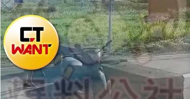 新竹當街激戰N回合!騎士「脫褲修竿」校車司機 採紅菱過程無碼流出