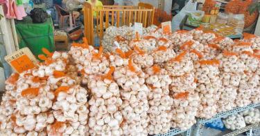 蒜頭每斤仍高居200元 等降價要明年2月