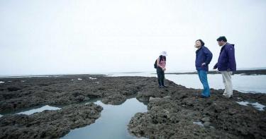 蔡英文前往桃園看藻礁 總統府:一直有考慮規劃