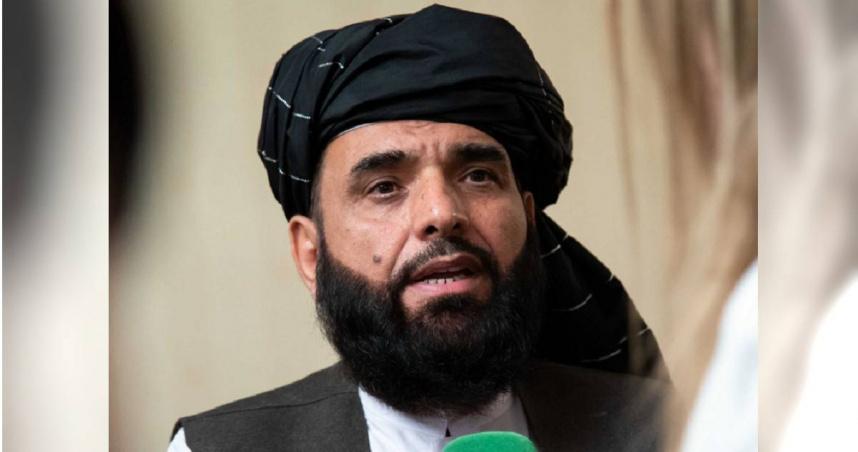 塔利班承諾「不生產毒品」請國際援助 專家分析難擺脫:他們太依賴