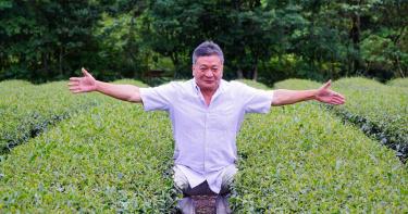 新北比賽茶上線 坪林茶農奪春季茶王