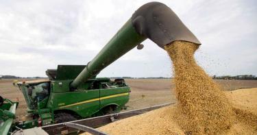 嘴上貿易戰喊很大 陸已買美逾6千億元農產品