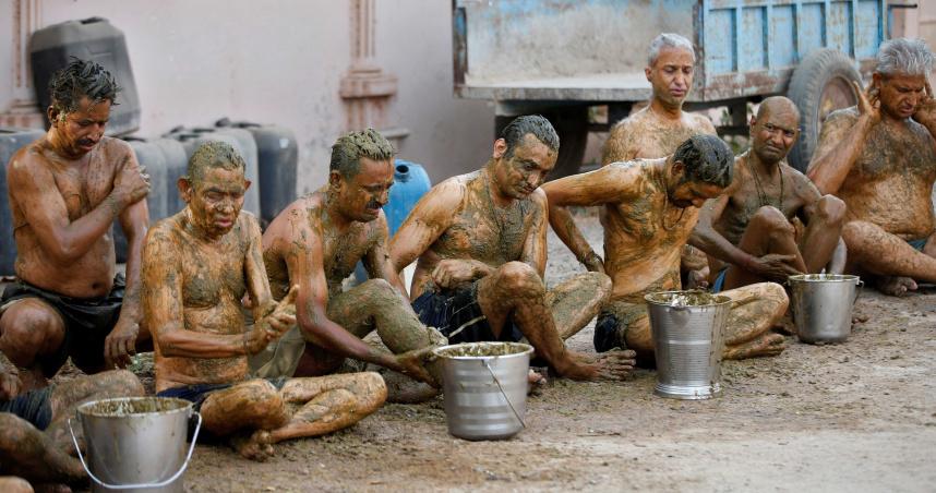 印度教徒迷信「抹牛糞可對抗新冠病毒」 醫警告:恐讓疫情變複雜