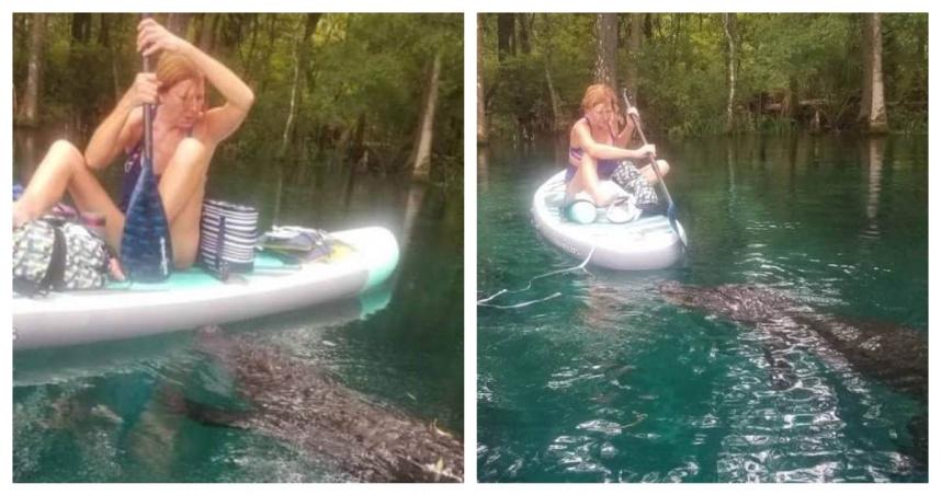 野生鱷魚比船大 佛州女「拿槳單挑」…狂喊:離我遠點