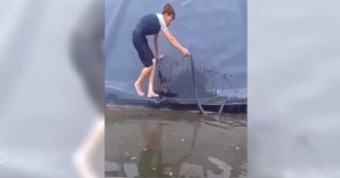 男好心援救溺水小蛇! 下一秒「龐然大物」突滑落嚇壞齊落水