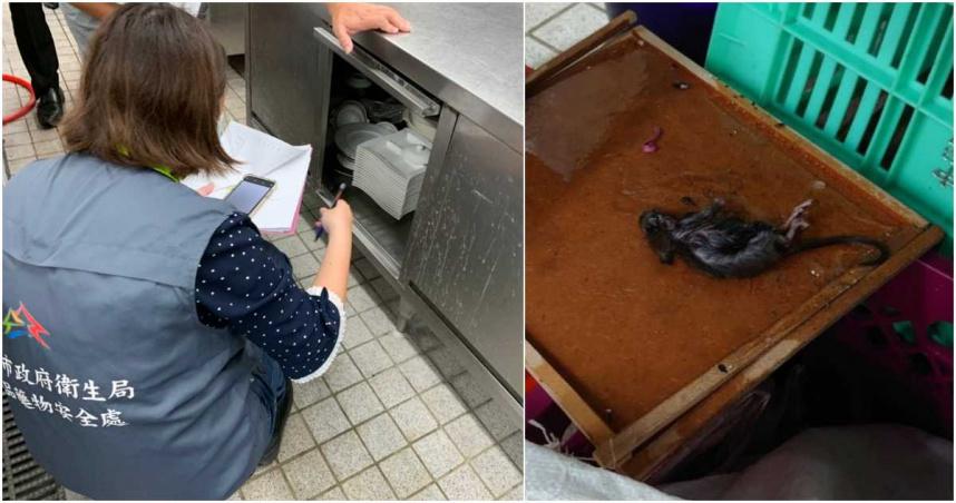 噁!台中林酒店「老鼠四處竄」照片曝光 複查還是沒通過