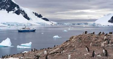 史上首次!南極洲高溫飆破20℃ 融冰恐摧毀企鵝家園