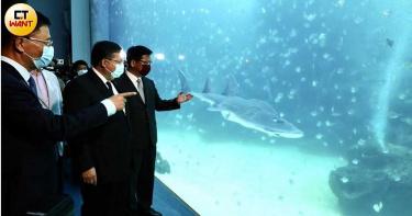 橫浜八景島海外首站桃園Xpark開幕 水族館門票創線上20萬報名紀錄