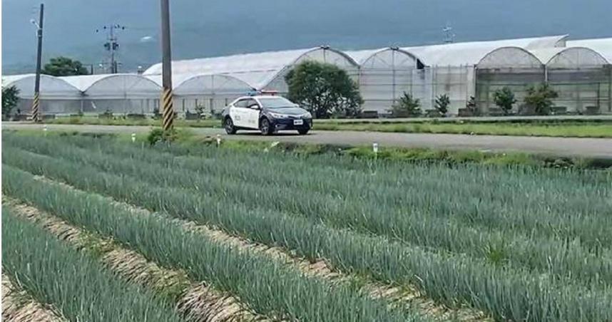 三星蔥每公斤飆250!一月4竊案 三星分局啟動「護蔥專案」