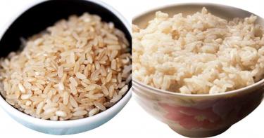 食物雙胞胎2/賭你會搞錯!糙米胚芽米一樣嗎? 主婦傻傻分不清楚