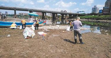 難耐連日高熱新北魚群翻肚 至今清出126噸魚屍