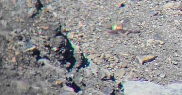 山友獨攀中央尖山 摔落200米深「死亡稜線」斷崖尋獲遺體