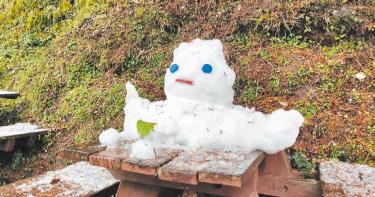 最長壽雪人!向陽遊樂區雪人 寒風中上班6天
